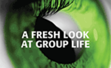 E-Book: A fresh look at group life